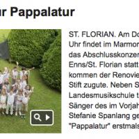 Bezirksrundschau online vom 5.6.2013